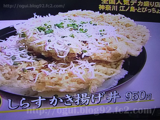デカ盛りTVベスト30店025