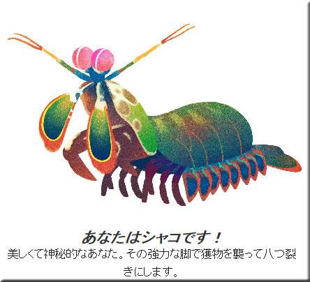 animal1503.jpg