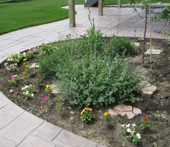 garden05201502.jpg