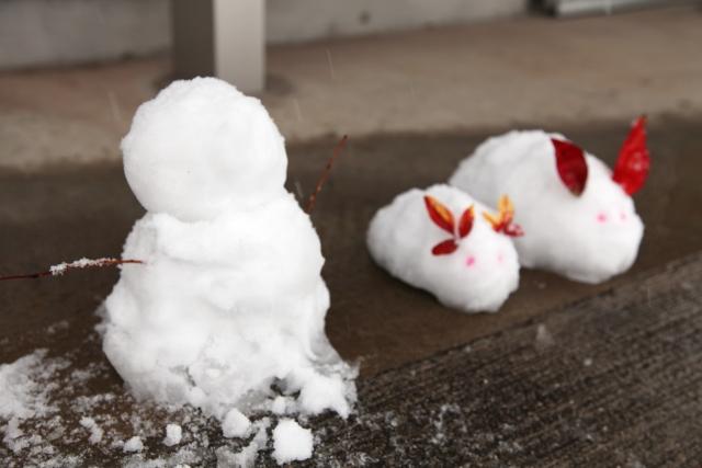 snow3756876897.jpg