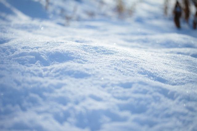 snow65358.jpg