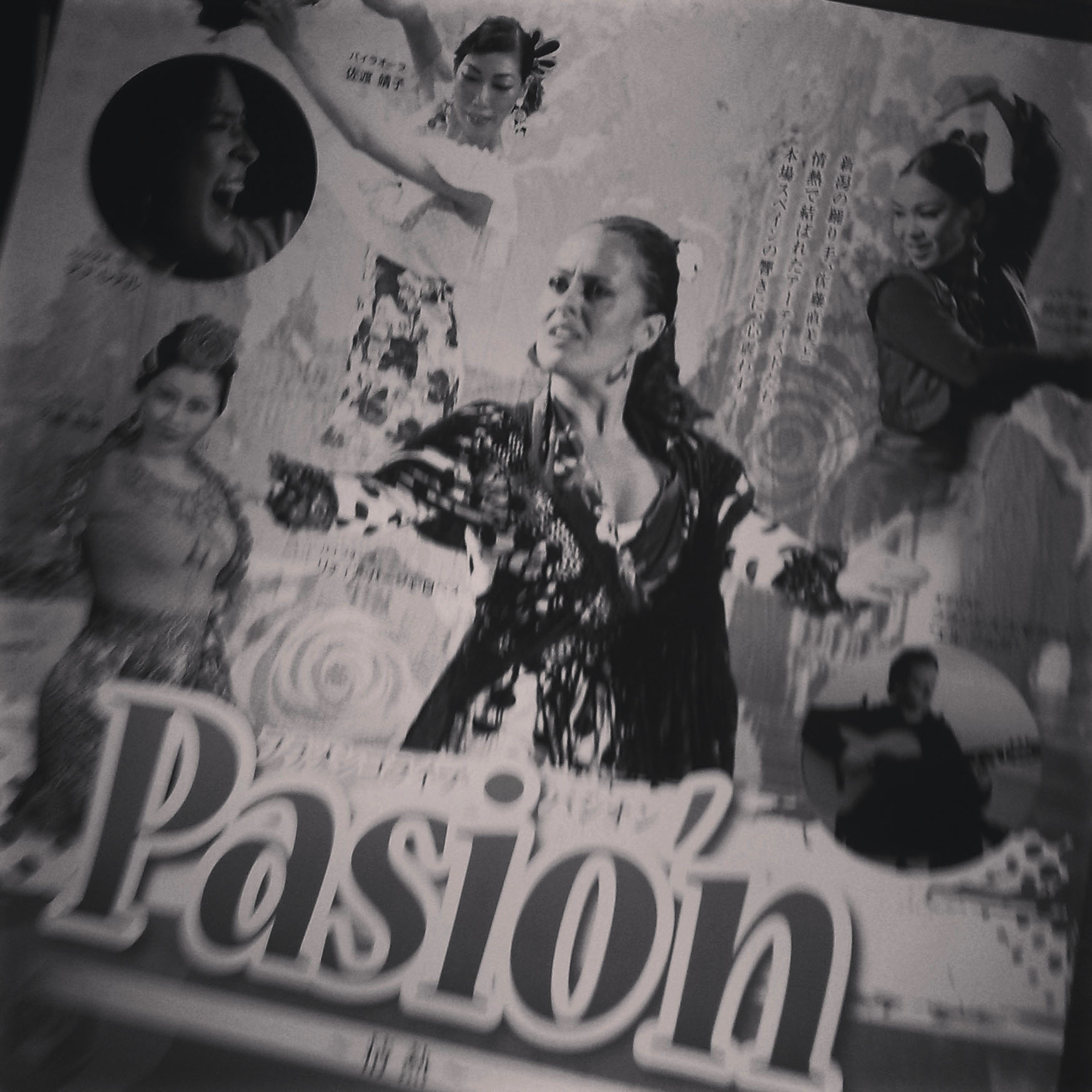 Pasion.jpg