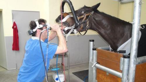 dentalpraktiker500.jpg