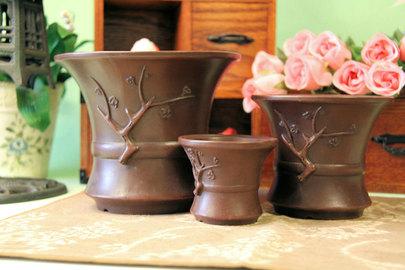 宜興の植木鉢 人とは違う植木鉢を探している方に最適