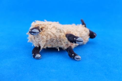 2015/4月サフォーク羊4