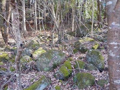鍋倉渓周辺の岩