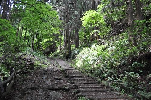 厳島神社参道2