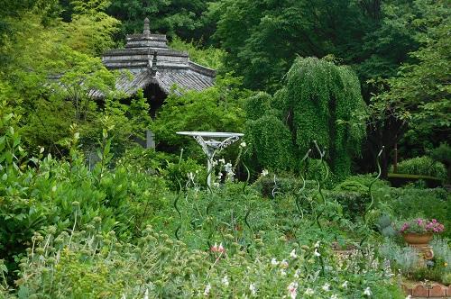 北山植物園2