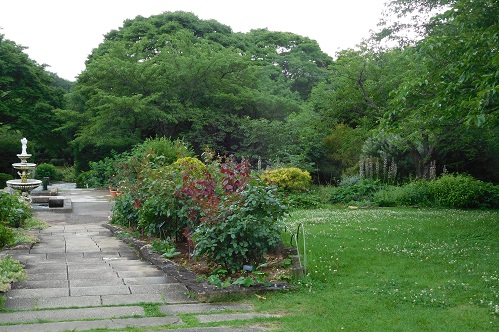 北山植物園7