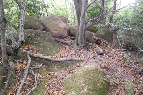 北山植物園内石