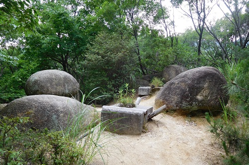 北山植物園内石2
