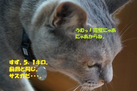20150420-06.jpg