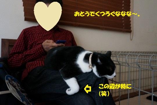 20150506-12.jpg
