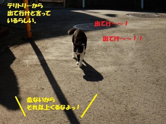 20150512-07.jpg