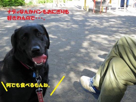 20150606-07.jpg