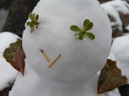 snowosakacastleDCIM0327.jpg