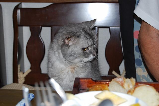 じぃじ、 何ば食べよると?