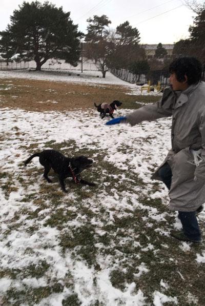 雪遊びもゆー