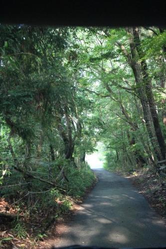 矢田山遊びの森