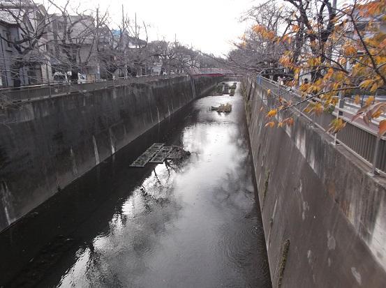 石神井0011