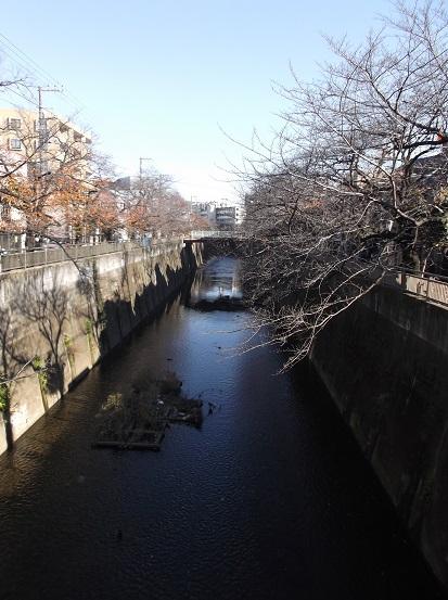 石神井2937