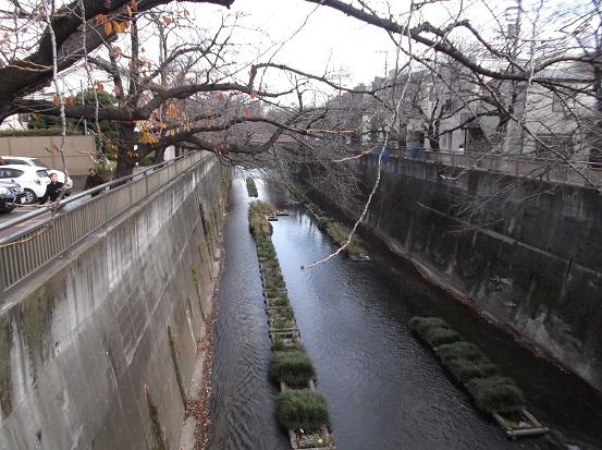石神井0022