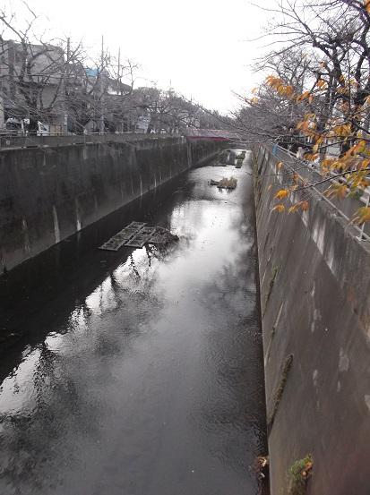 石神井0012