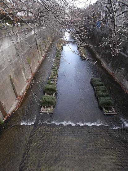 石神井0023