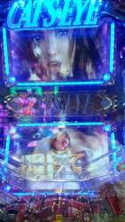 DSC_0043_20150619161013a03.jpg