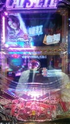 DSC_0113_201506191611377e0.jpg