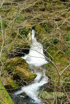 神庭の滝2滔々の滝
