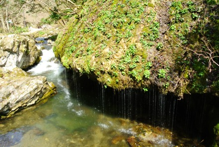 神庭の滝7玉垂の滝