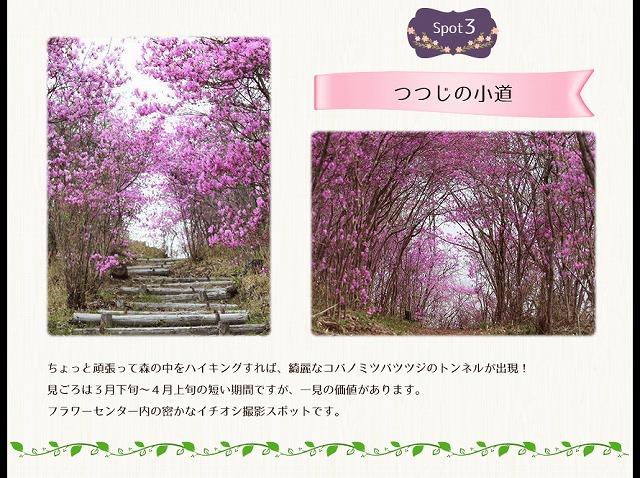 spot_img03.jpg