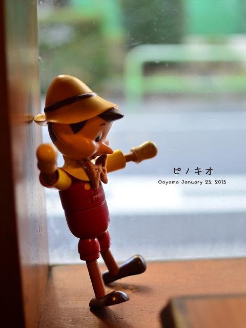 DSC_0988のコピー