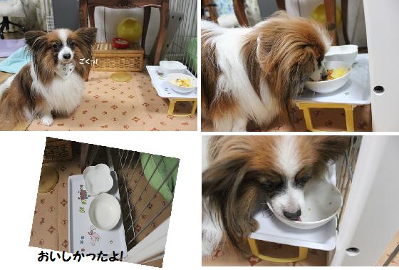 お皿は洗わなくていいかな?(笑)