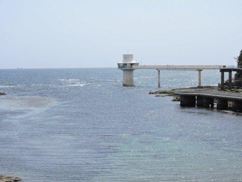 3勝浦海中公園