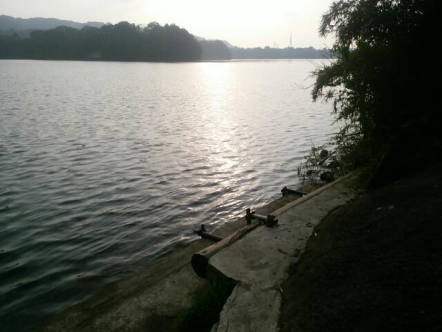 津久井湖で陸ッパリ