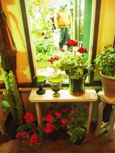 my-garden 209