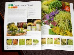 my-garden 184