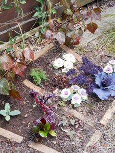 my-garden 067 (2)