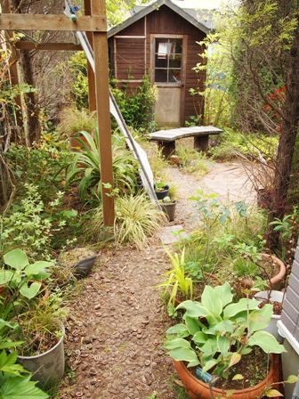 my-garden 068