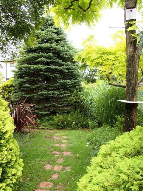 my-garden 118