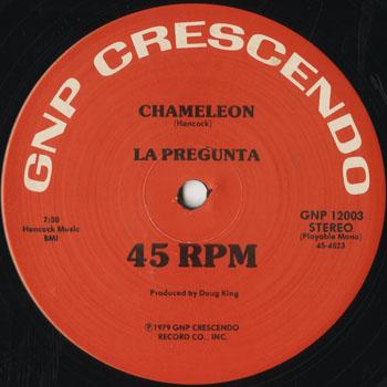 DG_LA PREGUNTA_CHAMELEON_201504