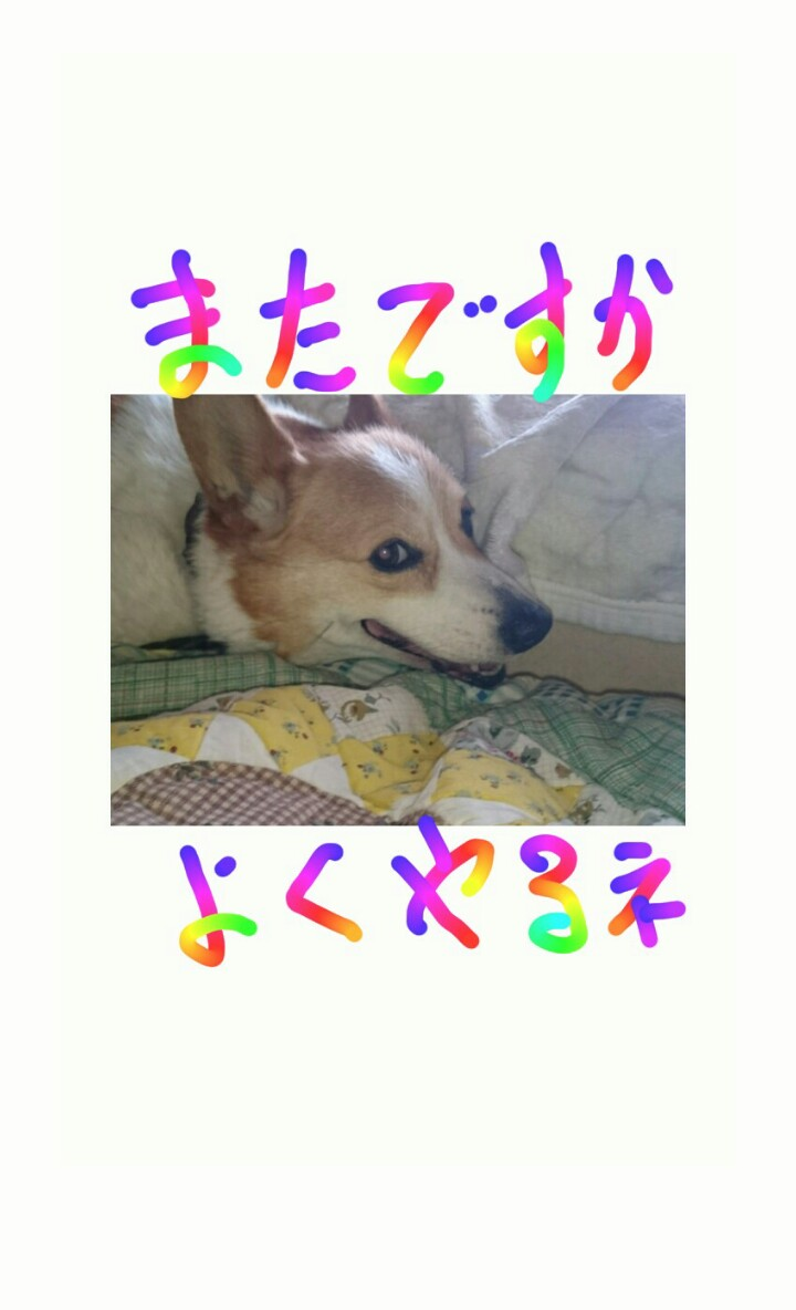 20150603055218c5f.jpg