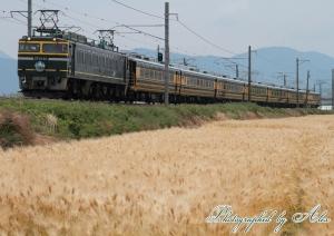 9215レ(=EF81-44牽引)
