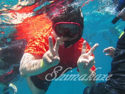 シミラン諸島シュノーケル、ダイビング、体験ダイビング