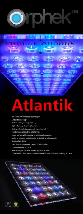 Atlantik panel_1