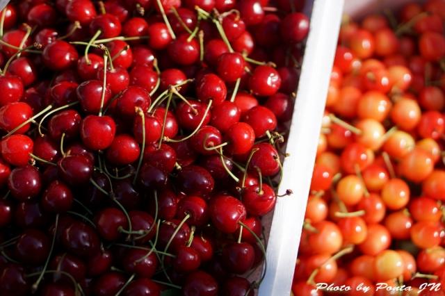 cherry150607-0006.jpg