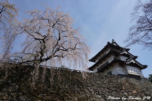 hirosaki1504-0034.jpg