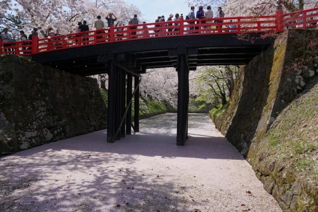 hirosaki1504-0035.jpg